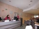 Steering Committee Brussels, 8. December 2010